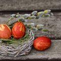 金の卵を産むガチョウを殺す社長|ビジネスで収入を増やす正しい手順